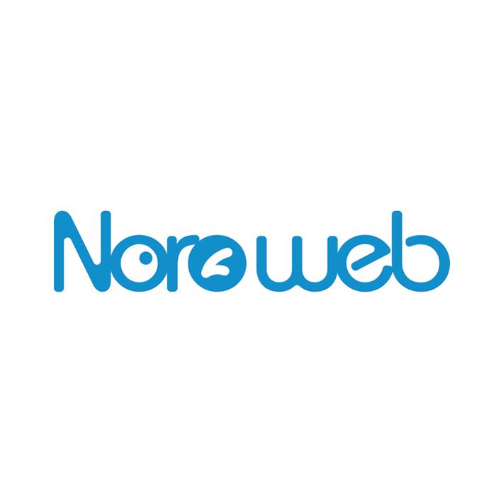 شرکت طراحی سایت نورو وب